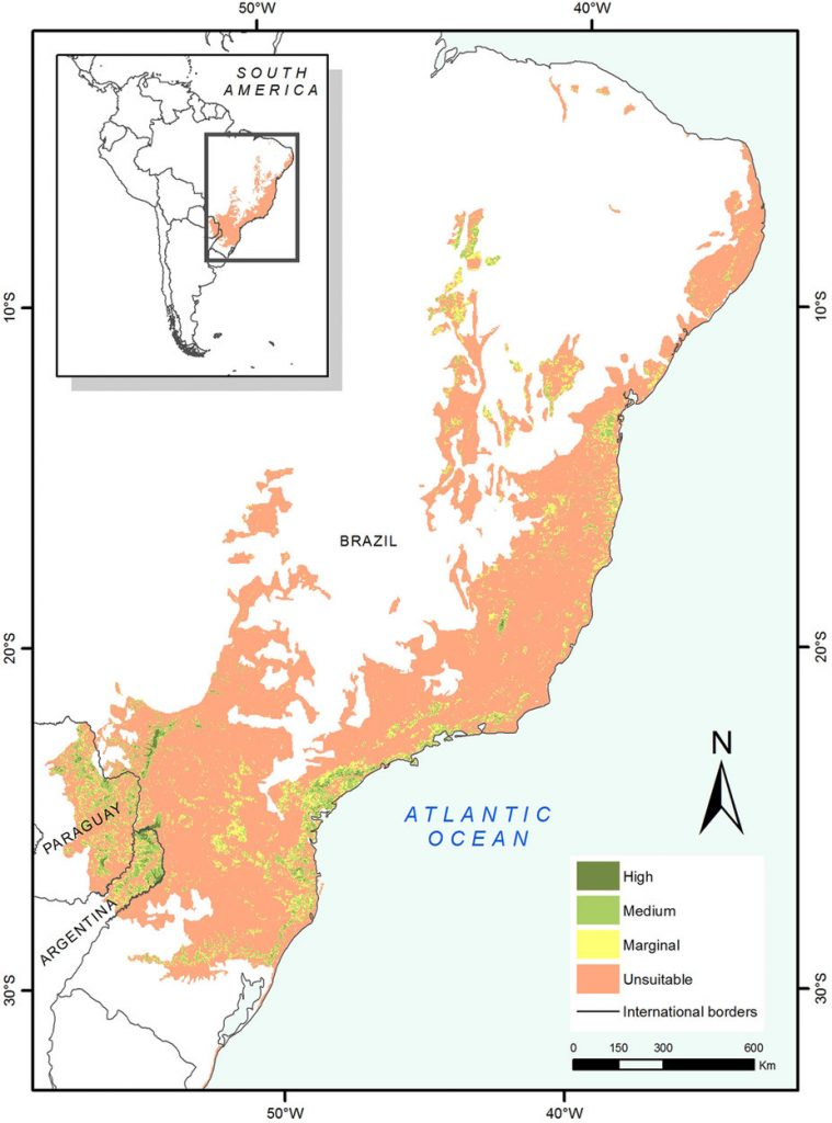 Mapa do potencial de habitabilidade de onças-pintadas na Mata Atlântica. Maior parte do bioma já não existe mais, ou perdeu a capacidade de abrigar a espécie. Fonte: Paviolo, A. et al. A biodiversity hotspot losing its top predator: The challenge of jaguar conservation in the Atlantic Forest of South America. Sci. Rep. 6, 37147; doi: 10.1038/srep37147 (2016).